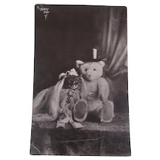 Early Postcard 1910, Teddy Marrying a Pussy Cat - Red Tag Sale Item