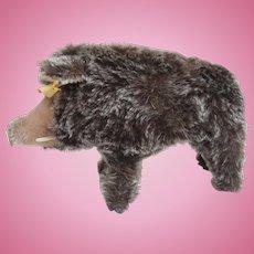 Steiff Dalle  Wild Boar, Pig, 1968 to 1976, Steiff Button