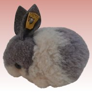 Steiff Wool Rabbit , 1968 to 1984, Steiff Button