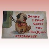 Early Christmas Bull Dog Pug Postcard