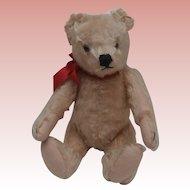 Hans,  VIntage Steiff Original Teddy Bear,1950's Squeaker Works, Steiff Button