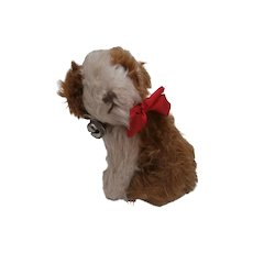 Sweet Vintage Dog, Molly Type