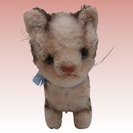 Sweet Steiff Tabby Cat 1959 to 1964, Steiff Button