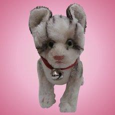 Steiff Kitty Cat , No Id's 1959 to 1964
