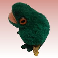 Largest Size Steiff Wool Frog, Steiff Button 1972 to 1983