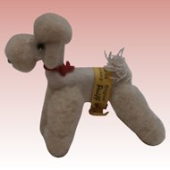 Steiff Wool Poodle  Dog ,Steiff Yellow Flag 1959 to 1967 , Muffie, Bild Lilly