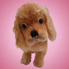 Steiff  Cockie,  Cocker Spaniel Dog , 1965 to 1976, No Id's