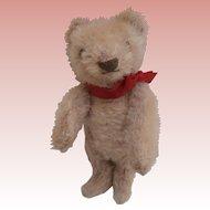 Milton,, Darling Little  Vintage Steiff Teddy Bear, No ID's