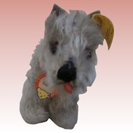 Steiff Tessie Schnauzer Dog 1954 to 1958, Steiff Button, Steiff Chest Tag