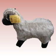 Steiff Snucki Mountain Sheep, Steiff  Button and Chest Tag, 1959 to 1964