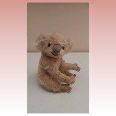 Steiff Koala Bear, No Id's, 1955 to 1961