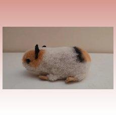 Steiff Guinea Pig Swinny 1962 to 1964, Steiff Button