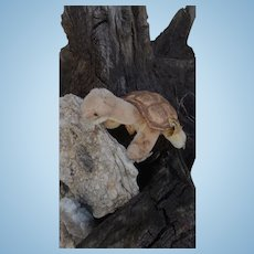 Steiff Slo Turtle, Tortoise, 1968 to 1975, Steiff Button , Steiff Chest Tag