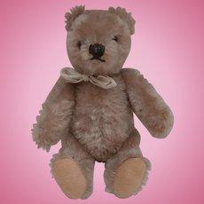 Eric, Vintage  Steiff Original Teddy Bear, 1954 to 1964, No Id's