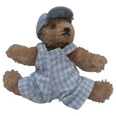 Barry , Vintage Steiff Original Flexible Teddy Bear, No I'ds, A/F