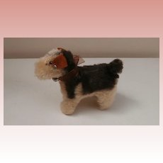 Steiff Terry  Airedale Terrier Dog  1951 to 1961, Steiff Button