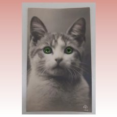 Early Glass Eyes Cat Postcard