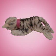 Steiff Floppy Cat, No Id's