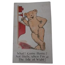 Teddy Bear Postcard, 1911