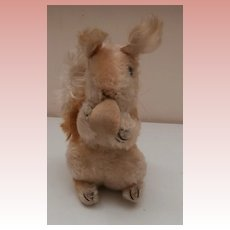 Steiff Possy Squirrel, No Id's,1966 to 1976