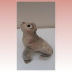 Steiff Robby Seal 1954 to 1963, Steiff Button