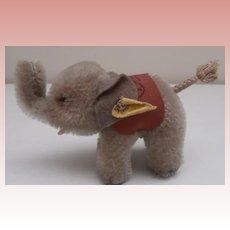 Steiff Elephant 1956 to 1964, Steiff Button