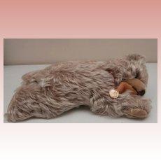 Hermann Vintage Zotty Type Lying Teddy Bear 1950/60's. Squeaker Still Works.