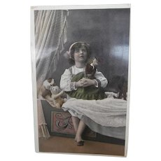 Early Postcard  1913, Rare Steiff Krinoline Coffee Cosy,Doll, White Teddy and Dog