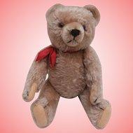 Timmy,Vintage  Hermann Teddy Bear , No Id's