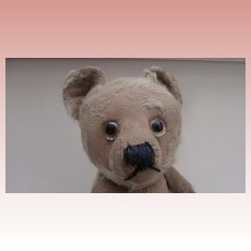 Poor Old,  Arnold, Yes No Schuco Teddy Bear, Needs Help