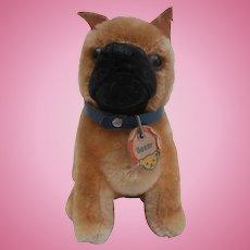 Steiff Small Boxer Dog, Steiff Chest Tag, 1958 to 1961