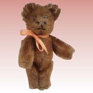 Herbert Earlier  Miniature Schuco Teddy Bear