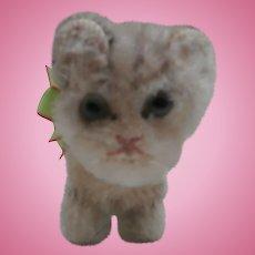Darling Steiff Tabby Pussy Cat, No Id's