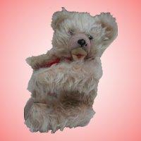 Barney, Vintage Teddy Bear