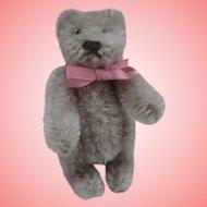 Tania, Sweet Miniature Steiff Teddy Bear