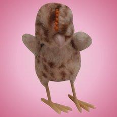 Steiff Chick, Steiff Button