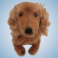 Steiff Waldi Dachshund Dog
