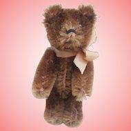 Vintage Schuco Teddy Bear