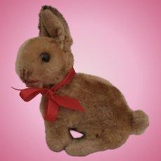 Poor Steiff  Sonny Bunny Rabbit, No Id's