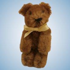 Vintage Schuco Miniature Teddy Bear