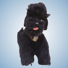 Steiff Snobby Poodle Dog, Button