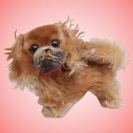 Steiff Peky Pekinese Dog, All Id's