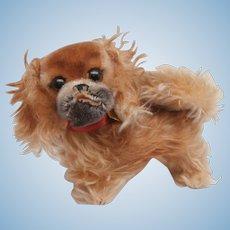 Steiff Peky Pekinese Dog, All Id's