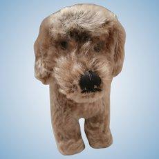 Steiff Raudi Dachsund Dog, Steiff Button