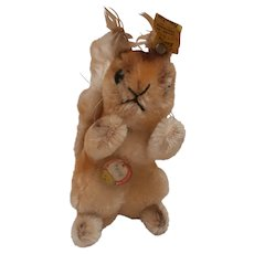Steiff Possy Squirrel , Steiff Chest Tag/ Button