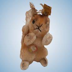Steiff Possy Squirrel , Steiff Chest Tag/ Button