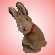Sweet Smallest  Steiff Rabbit,  Manni ,Steiff Button