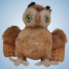 Steiff Wittie Owl , No Id's