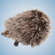 Steiff Joggi Hedgehog,  No Id's.