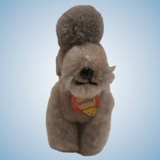 Steiff Snobby Poodle Dog, Smallest Size, Chest Tag